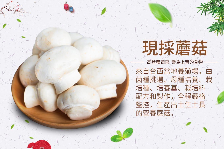 旅居漁村 海鮮寶寶粥 鮮奶蘑菇鮪魚燉飯 在地種植 新鮮蘑菇